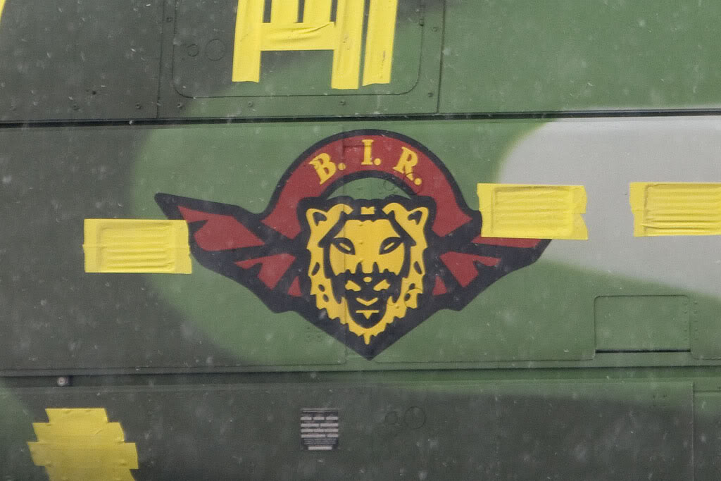 Forces Armées Camerounaises Bir