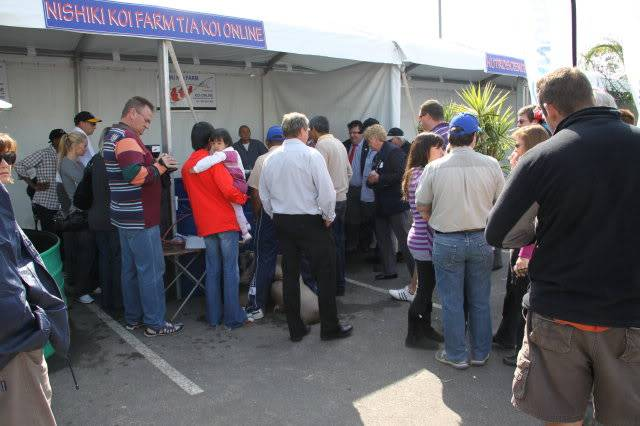 Some of the Exhibitors at our 15th WCKC Show 2010 IMG_0262