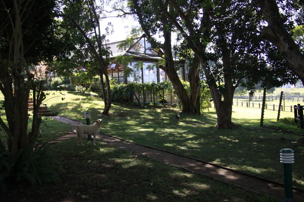 Pond Safari hosted by Dream Koi _MG_0266