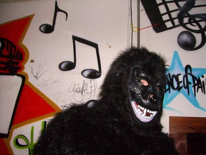 real pics - Page 9 Gorilla2