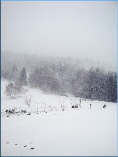 ...:: La sorcière ::... [p.19- Souldoll Fafner] - Page 5 Snow0