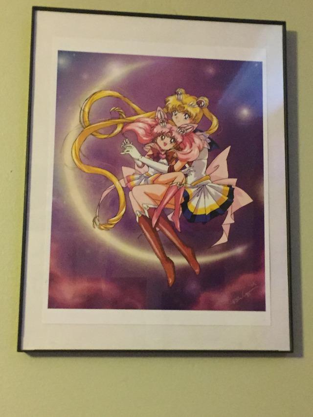 Princess Luna's Collection IMG_0196_zpsr0qsprsf
