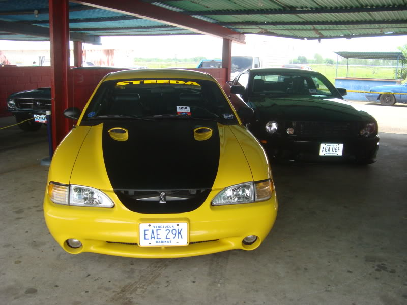 VI Encuentro Nacional de Clubes Mustang DSC05531