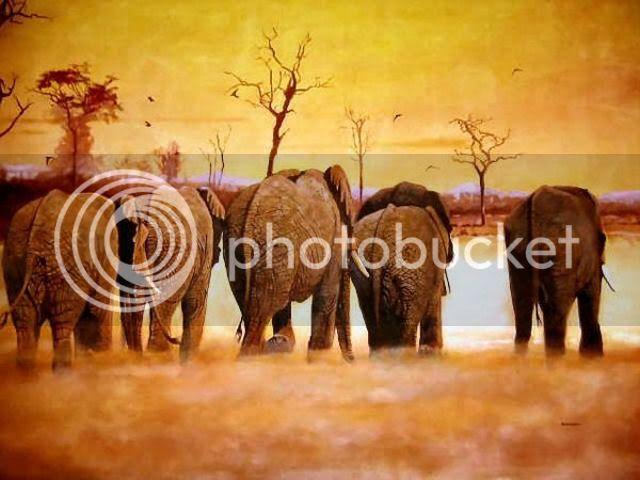 Slonovi Slonovi