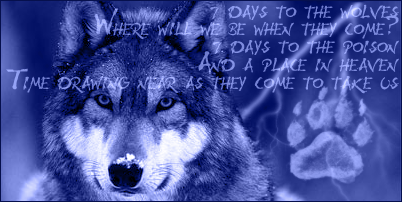Phazzy's Art Thread Monochromewolf