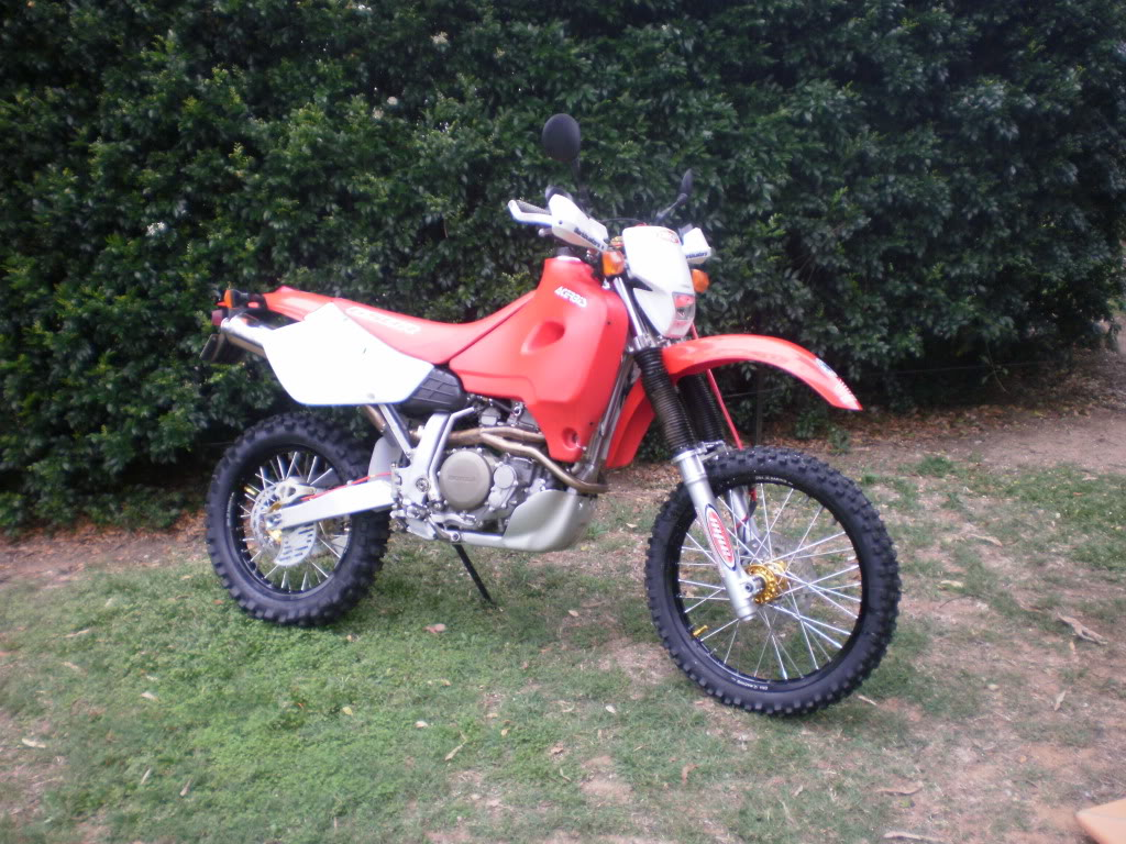 Cool XR650R Pix! P9150090