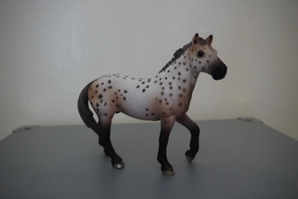 My Schleich horses P1040249_zps02988f7b