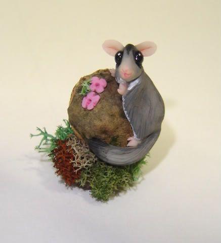 Petauro, gerboa e opossum DSC07826
