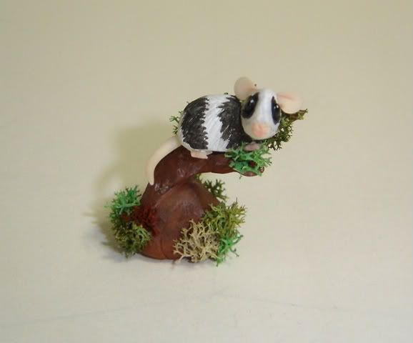 Petauro, gerboa e opossum DSC07991