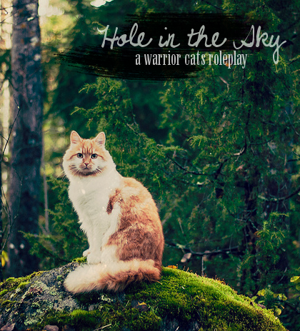 Hole in the Sky [LB] Hitsad4