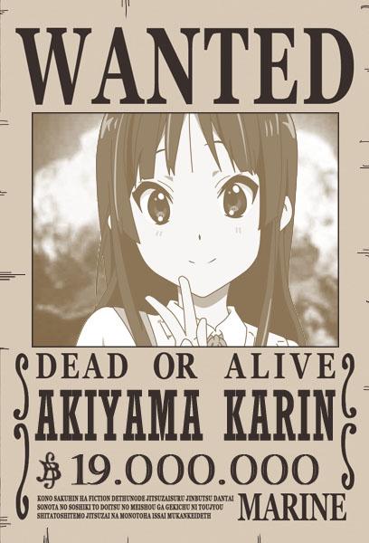 ¡Wanted!: Akiyama Karin Cartelkarin