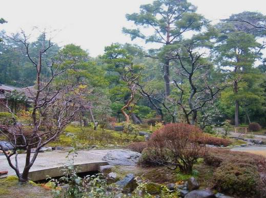 Trees - Page 2 KenrokuEn