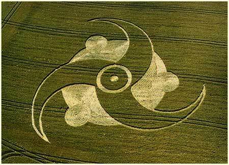 Kiệt tác của người ngoài hành tinh 13Crop_Circles