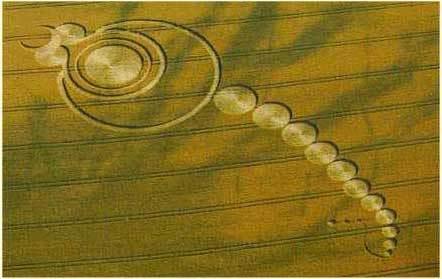Kiệt tác của người ngoài hành tinh 19Crop_Circles