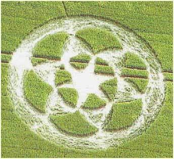 Kiệt tác của người ngoài hành tinh 4Crop_Circles