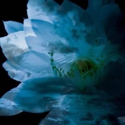 LM.C (Lovely-Mocochang.com) Luna_sea_memorial_cover_album_-re_b