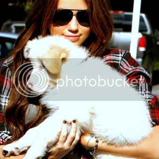 Miley Cyrus - Page 2 Miley_104
