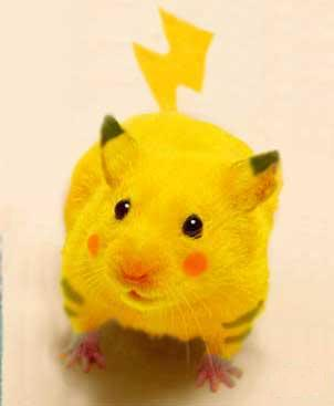 If Pokémon had good graphics. Pikahamster