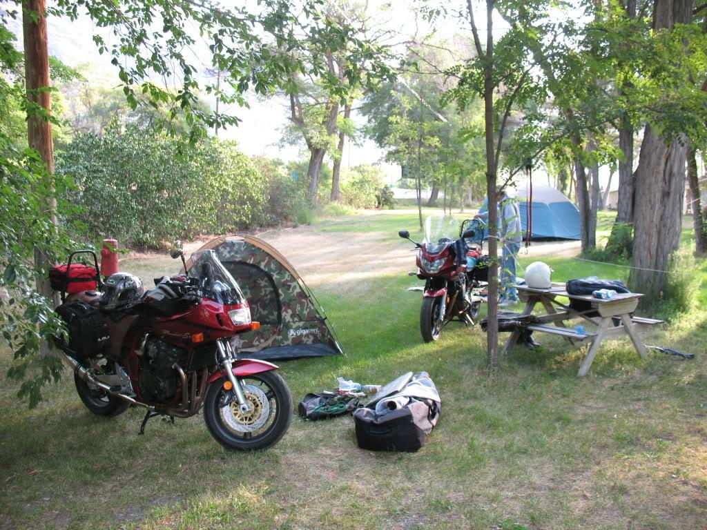 Bandits on the roads in British Columbia IMG_1024