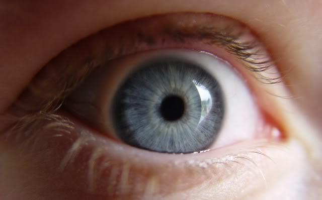 vos yeux! ( attention âmes sensibles: oeil en gros plan ^^) DSC05904