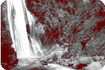 ● The Falls