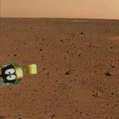 he chances of any life on mars is 527089_268619643251303_856994050_n