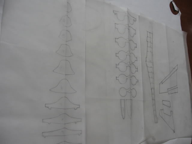 Works In Progress Link Naza Model Art IMG_3952