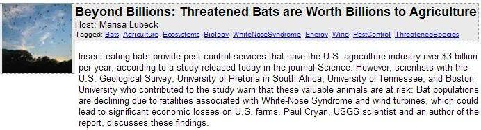 Billion dollar bats are endangered BatsAsPestControl
