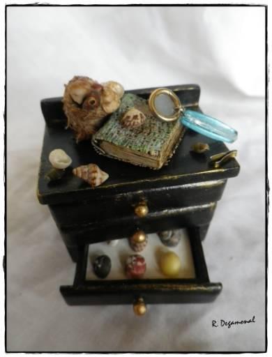 Colección de conchas 749a1393-b386-4748-a930-b20465683403_zpse6d8c9c0