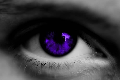 Emerald Clan Purple_eye