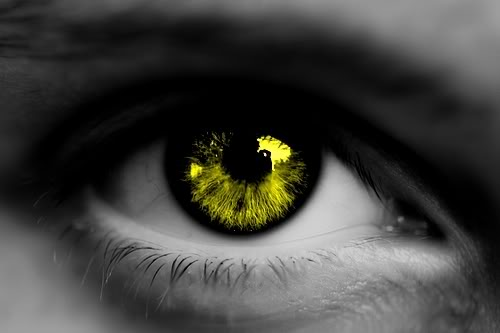 Denkou Clan (Lightning) Yellow_eye