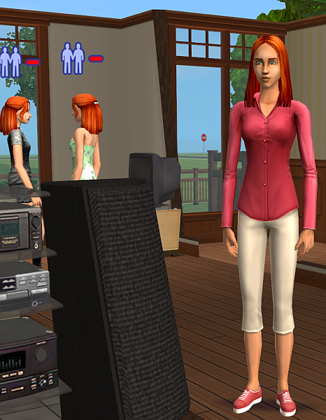Sims 2 Gender Change Tutorial using SimPE by Caleb_71 Daniel1