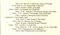 Bloodline of Tennessee Lead & Tennessee LeadII Scan0059-1