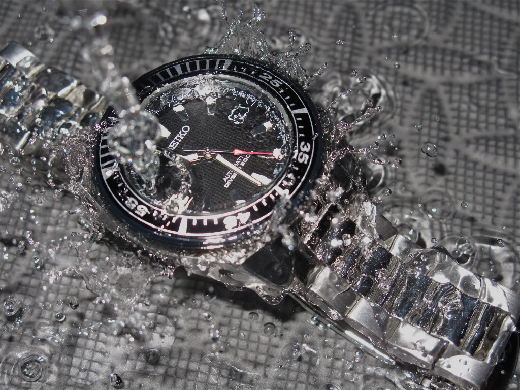 How about some dive watches? ..... IMG_1499