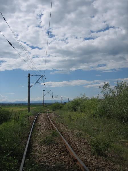 914 : Strehaia - Motru Hm. IMG_3651