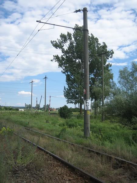 914 : Strehaia - Motru Hm. IMG_3654