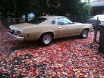 New paint is finally on my 74 Malibu Nov3rd20120212_zpse16890b6