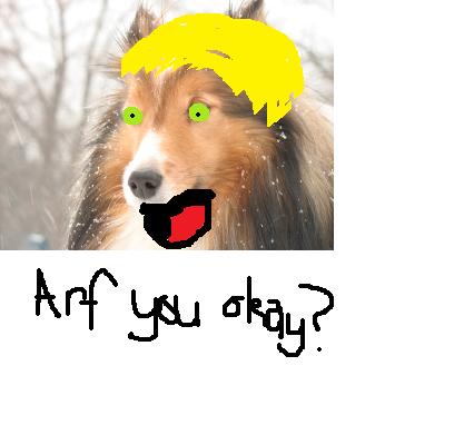 FanArt Challenge! VOTING! Dog