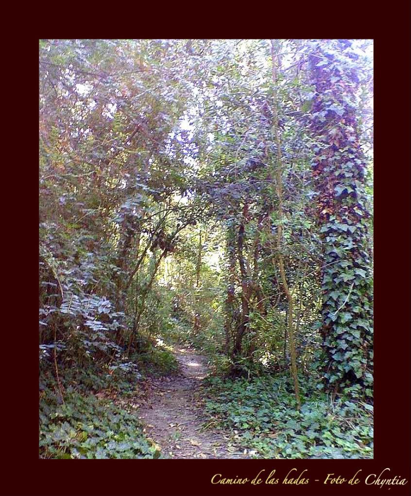 El camino de las Hadas RECOEMNDADO DE MAYO 29-03-12-1