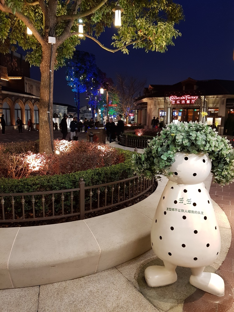 Zavandor a Shanghai Disneyland - Impressioni 20180321_183100_zpst3xwoee7
