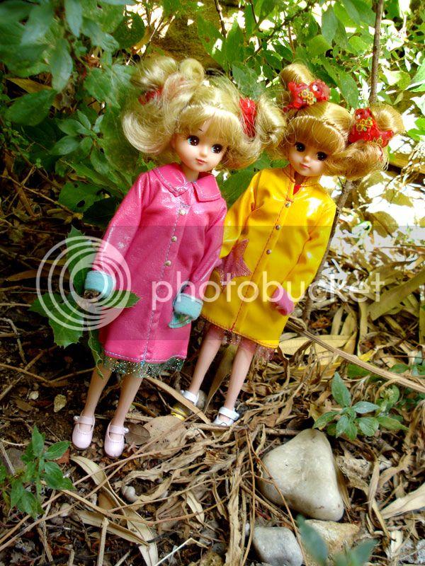 Hachiko & Sachiko, ballade en forêt DSC05315