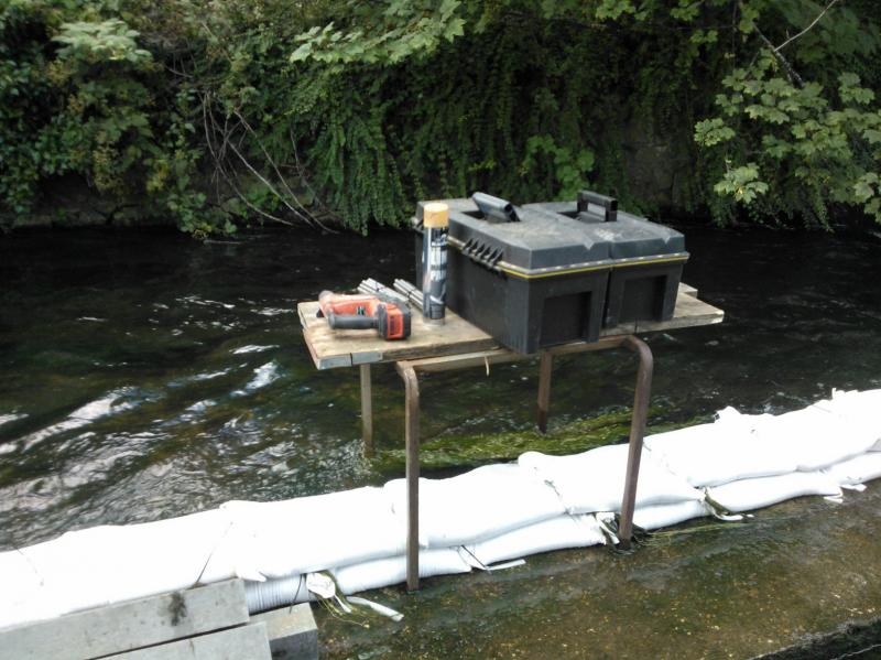 Improving fish passage on the Hogsmill, 17-20th July, Volunteers needed  - Page 2 WP_001015