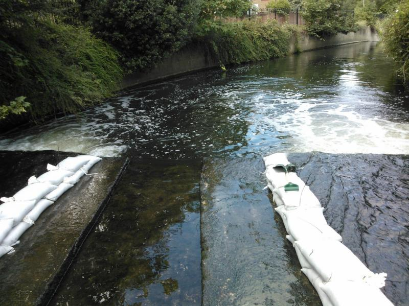 Improving fish passage on the Hogsmill, 17-20th July, Volunteers needed  - Page 2 WP_001019