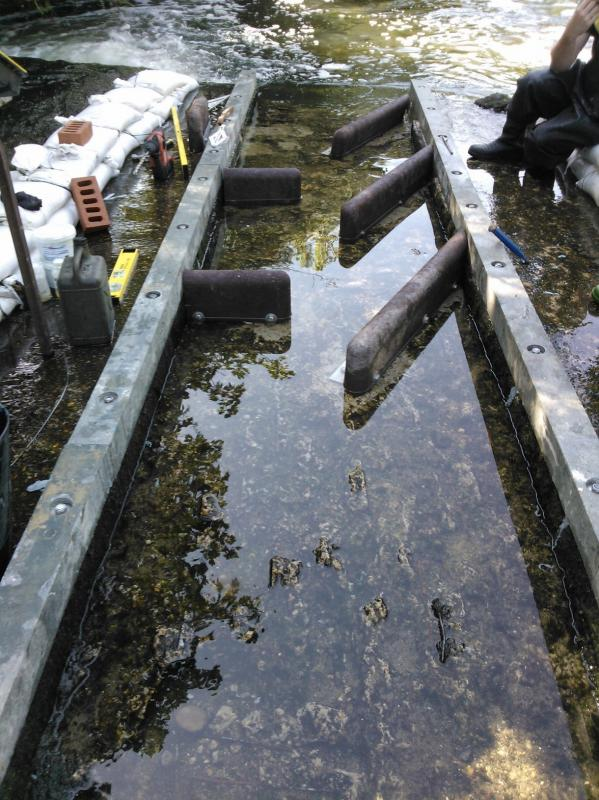 Improving fish passage on the Hogsmill, 17-20th July, Volunteers needed  - Page 2 WP_001082