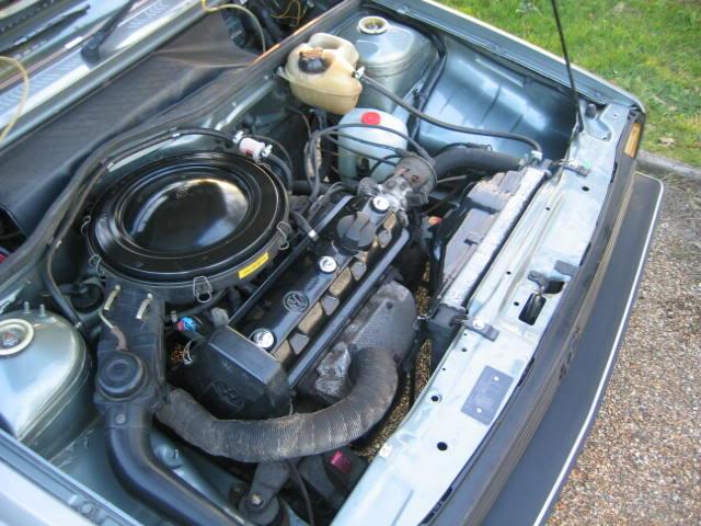 motores de polo con fotos - Página 2 Img3296uj4