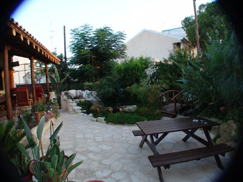 My Pond in Nicosia (CYPRUS) DSC00636