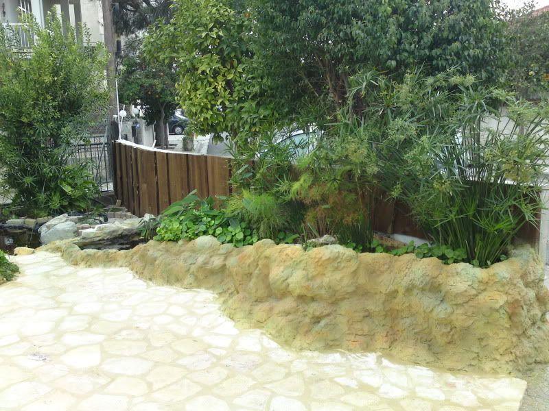 My Pond in Nicosia (CYPRUS) DSC02763