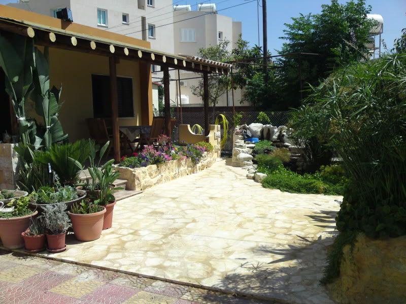 My Pond in Nicosia (CYPRUS) DSC03484