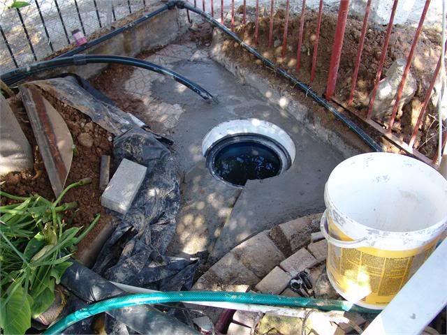 My Pond in Nicosia (CYPRUS) DSC07858