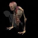 Pack de Zombi Zombie11
